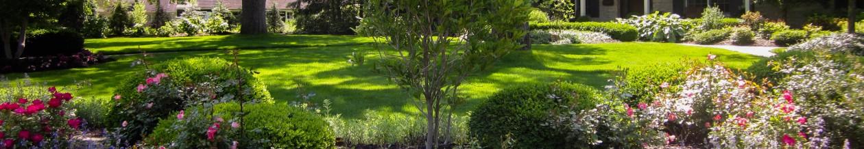 Claude's Garden Scapes
